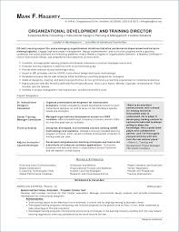 Business Development Consultant Resume It Beautiful Management Samples