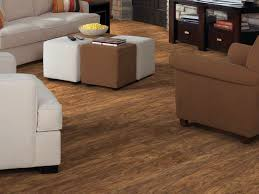 Shaw Vinyl Plank Floor Cleaning by Install Shaw Luxury Vinyl Plank Flooring U2014 Tedx Decors Best Of