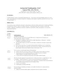 Insurance Agent Resume Objective Examples Actuarial Example Actuary Sample Resumes