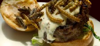 cuisine pourrie food le nouveau plat tendance à washington des hamburgers à la