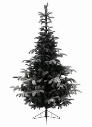 Balsam Fir Artificial Christmas Trees by 7ft Snowy Nordmann Fir Feel Real Artificial Christmas Tree Hayes