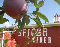 Pumpkin Farms In Bay County Michigan by Michigan U0027s Must Visit Cider Mills Mitten Crate