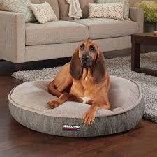 Tempur Pedic Dog Beds by Tempur Pedic Dog Bed Reviews Home Beds Decoration