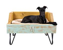 Kuranda Dog Beds by Bedroom Charming Some Great Benefits Elevated Dog Beds