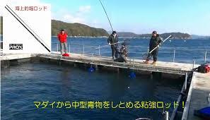 siege technique sakai fishermans wharf rakuten global market same day shipping