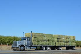 Oct 7 - Williams, CA To Grants Pass, OR Truck Carrying Hay Rolls In Davidsons Lane Moore Creek Near Hay Ggcadc Flickr Bale Bed For Sale Sz Gooseneck Cm Beds Parked Loaded With Neatly Stacked Bales Near Cuyama My Truck And The 8 Rx8clubcom On A Country Highway Stock Photo Image Of Horse Ranch Filescott Armas Truckjpg Wikimedia Commons Hits Swan Street Richmond Rail Bridge Long Delays Early Morning Fire Closes 17 Myalgomaca Oversized Load On Chevy Youtube Btriple Trucks Allowed Oxley To Ferry Relief The Land A 89178084 Alamy