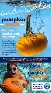 Spirit Halloween Job Application by Underwater Pumpkin Patch City Of Brisbane