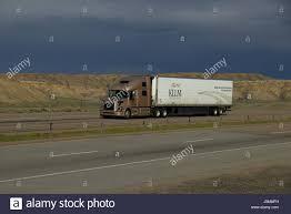 A Gold Volvo Semi-Truck Pulls A White