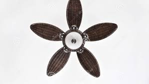 Rattan Ceiling Fans Perth by Ceiling Beguiling Black Wicker Ceiling Fans Pleasing Wicker
