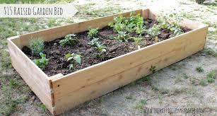 Creative of Simple Raised Bed Garden Build A Raised Garden Bed
