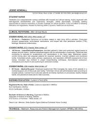 Examples Of Nursing Resumes Or Hospice Nurse Resume