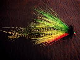 Sink Tip Fly Line Attachment by Fishing Headquarters Com Muskies On The Fly Where To Begin
