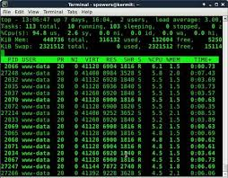 siege your servers linux journal