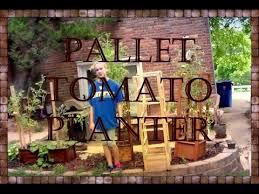Pallet Tomato Planter