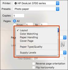 Unnamed Print Settings Pop Up Menu Open With Layout Selected