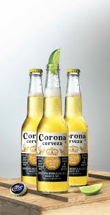 O Fallon Pumpkin Beer by 88 Best Beermex Images On Pinterest Beer Corona And Alcohol