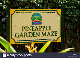 Sign for the Pineapple Garden Maze at the Dole Plantation in