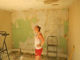 Tile Adhesive Remover Home Depot by Wall Ideas Wallpaper Remover Spray Wilko Wallpaper Stripper