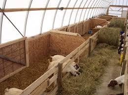 Livestock Shelters   Multi Shelter Solutions 124 Best Horse Barns Images On Pinterest Horse Shed Record Keeping For Goats Eden Hills Homesteading Blog Posts The Modern Day Settler Monitor Barn Plans Google Search Pole Barn 95 Chevaux Shelter Horses And Plans Hog Houses Small Farmers Journal Goat Housing Modern Dairy Shed Pdf Shelter Floor 237 Raising Goats Baby Building A Part 1 Such And Best 25 Ideas Pen 2