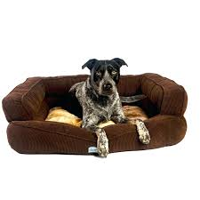 Ez Bed Frontgate by Frontgate Dog Bed Korrectkritterscom