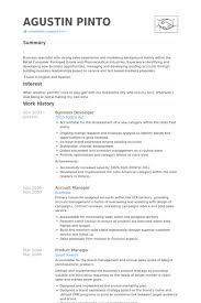 Business Developer Resume Samples