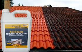 anti mousse murs exterieurs anti algues toitures