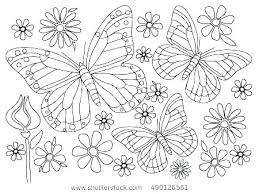 Lovely Monarch Coloring Page C6456 Butterfly Related Post Pages Free