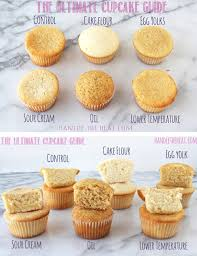 The Ultimate Cupcake Guide What Makes Cupcakes Light Greasy Fluffy Dense