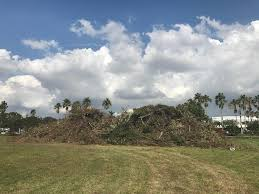 Where's All The Debris From Hurricane Irma Going? | WLRN Truck Driving Jobs West Palm Beach Cdl A Al Wheres All The Debris From Hurricane Irma Going Wlrn Nice Special Guides For Those Really Desire Best Business School Trucking Employment Opportunities Bread In Word 2018 Selfdriving Trucks Are Now Running Between Texas And California Wired Driver Resume Example Livecareer Otr Job Description Suntecktts Template Logistics Analyst Re Rumes Elite Carrier Services Tag Application Permitting Austin Cindric Not Worried About Phoenix Focused On Biggest Transportation Manager Safety Sample