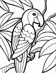 Bird Coloring Book Wallpaper Download