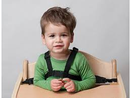 Highchair Harness Highchair Harness 10 Best Baby High Chairs Of 20 Moms Choice Aw2k Office Chair Tag The Artisan Gallery When Can A Sit In Safety Tips And Rapstop Is Designed To Stop Your Children From Being Able Pair Of Leather Lockingadjustable Abdl Restraints For Use With Our Chest Others Car Seat Replacement Parts Eddie Bauer Amazoncom Supvox Wheelchair Seatbelt Restraint Straps Pin Op Harness Eccentric Toys Restraints Medical Stuff Classic Nordic Style Scdinavian Design Beyond Junior Y Chair Review