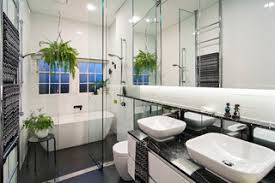 Good Plants For Bathroom by Best Plants For Bathroom Decor And My Favorite