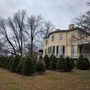 Christmas Tree Shop Deptford Nj Number by Christmas Tree Shops Christmas Trees 1775 Deptford Ctr Rd
