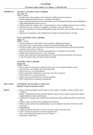 Download Construction Laborer Resume Sample As Image File