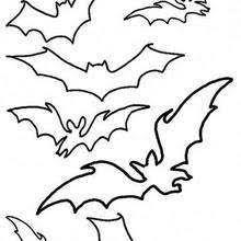 Realistic Bat Butterfly Stencil