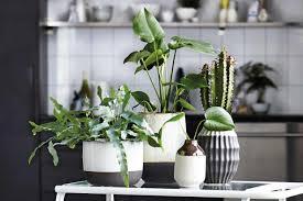 deko ideen für die wohnung schöner wohnen