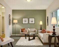 beautiful green living room walls ideas benjamin shades of