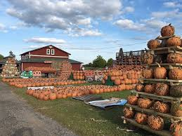 Clarence New York Pumpkin Farm by Fall Fun In Western Ny Where Locals Go For Apples Pumpkins