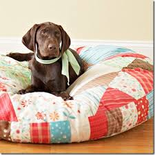 Pampered Pets Bed And Biscuit by Quilted Pet Bed Fur Babies Dog Beds And Blanket