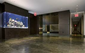 Extra Large Fish Tank Decorations by Decorations 30 Gallon Fish Tank 20 Gallon Fish Tank Petco Big