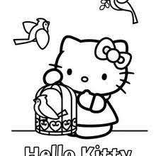 Hello Kitty And A Birdcage