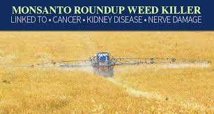 Monsanto Roundup Weed Killer Lawsuit Monroe Law Group