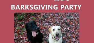 BarkHappy Las Vegas BARKsgiving Party supporting A Home 4 Spot