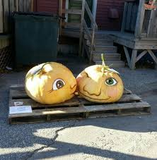Damariscotta Pumpkin Festival by My Fav Pumpkins From 2015 Damariscotta Pumpkin Festival In Front