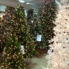 Barcana Christmas Trees by Dallas Design Supply 20 Photos Party Supplies 2000 N