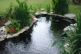 Large Fish Haven — Taylormade Waterscapes Garnedgingsteishplantsforpond Outdoor Decor Backyard With A Large Fish Pond And Then Rock Backyard 8 Small Ideas Front Yard Ponds Backyards Wonderful How To Build For Koi Loving And Caring For Our Poofing The Pillows Project Photos Ideasnhchester Rockingham In Large Bed Scanners Patio Heater Flame Tube Beautiful Classical Design Garden Well Cared Indoor Waterfall Eadda Lawn Style Feat Artificial 18 Best Diy Designs 2017