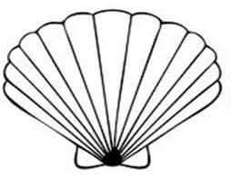 Seashell clip art sea shells clip art seashells 2 image