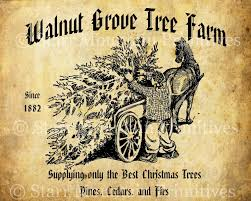 Best Christmas Tree Farms Santa Cruz by Farming Christmas Cards Christmas Lights Decoration
