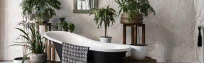 die fünf besten pflanzen fürs bad frag team clean