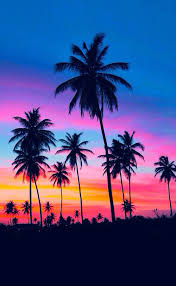 Background Blue Cute Neon Pink Sky Tree Tropical Tumblr Wallpaper Wallpapers